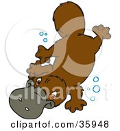 Clipart Illustration Of A Cute Swimming Platypus Underwater With Bubbles by Dennis Holmes Designs