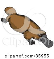Clipart Illustration Of A Brown Platypus With A Gray Bill by Dennis Holmes Designs