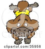 Clipart Illustration Of A Brown Platypus In Orange Shorts Swimming Forward by Dennis Holmes Designs