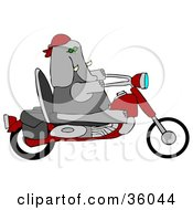 Clipart Illustration Of A Cool Elephant Biker Riding A Red Motorcycle by Dennis Cox