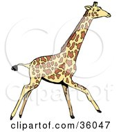 Clipart Illustration Of A Walking Giraffe In Profile Going To The Right by Dennis Holmes Designs