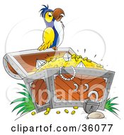 Clipart Illustration Of A White Yellow And Blue Parrot Perched On An Open Treasure Chest Full Of Jewels And Gold by Alex Bannykh