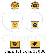 Set Of Six Black White And Orange Cougar Icons