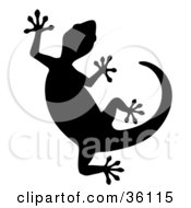 Clipart Illustration Of A Silhouetted Curved Gecko by Frog974 #COLLC36115-0066