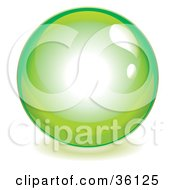 Clipart Illustration Of A Lime Green Reflective Crystal Ball Marble Or Orb by Frog974 #COLLC36125-0066