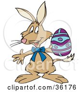Clipart Illustration Of A Brown Bilby Holding A Purple And Blue Easter Egg by Dennis Holmes Designs
