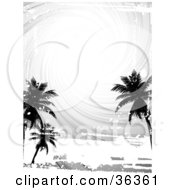 Black And White Swirling Sky With Silhouetted Palm Trees And Grunge