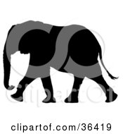 Clipart Illustration Of A Black Silhouetted Adult Elephant In Profile Walking Left