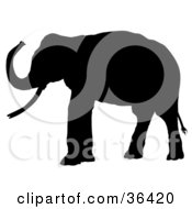 Clipart Illustration Of A Profiled Black Silhouetted Adult Elephant Facing Left