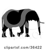Clipart Illustration Of A Profiled Black Silhouetted Adult Elephant Walking Right