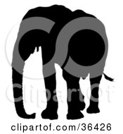 Clipart Illustration Of A Black Silhouetted Adult Elephant Looking Left