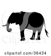 Clipart Illustration Of A Black Silhouetted Adult Elephant Standing In Profile
