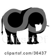 Clipart Illustration Of A Black Silhouetted Adult Elephant Facing Right