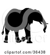 Clipart Illustration Of A Black Silhouetted Adult Elephant Walking Right