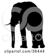 Clipart Illustration Of A Black Silhouetted Adult Elephant With Tusks