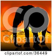 Clipart Illustration Of A Black Silhouetted Adult Elephant Silhouetted Against An African Sunset