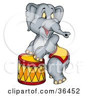 Circus Elephant Standing Up Against A Stool