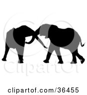 Clipart Illustration Of A Black Silhouetted Elephant Pair Playing With Each Others Trunks by dero