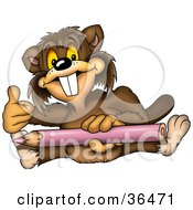 Clipart Illustration Of A Coloring Beaver Giving The Thumbs Up And Holding A Purple Pencil by dero