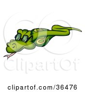 Clipart Illustration Of A Green Cobra Snake Wearing Glasses And Slithering by dero