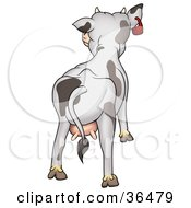 Clipart Illustration Of A Dairy Cow With Udders Facing Away