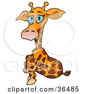 Clipart Illustration Of A Blue Eyed Giraffe Sitting And Hugging Her Knees by dero
