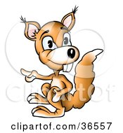 Clipart Illustration Of A Buck Toothed Orange Squirrel Pointing Left