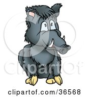 Seated Gray Boar With Tusks