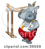 Sporty Hippo Gymnast Standing By The Bars