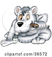 Clipart Illustration Of A Sitting Polar Bear Eating An Ice Pop by dero