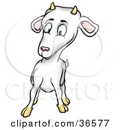 Clipart Illustration Of A Curious White Billy Goat With Horns