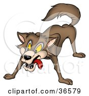 Clipart Illustration Of A Brown Wolf In A Protective Stance by dero