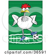 White Rooster Playing Association Football Or Soccer