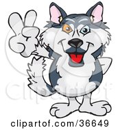 Clipart Illustration Of A Peaceful Husky Dog Smiling And Gesturing The Peace Sign With His Hand by Dennis Holmes Designs