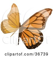 Clipart Illustration Of An Abstract Orange Butterfly by OnFocusMedia
