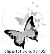Clipart Illustration Of A Group Of Black And Gray Flying Butterflies by OnFocusMedia