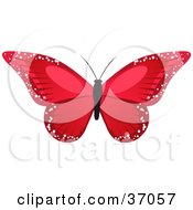 Clipart Illustration Of A Stunning Red Butterfly With Sparkling Wings