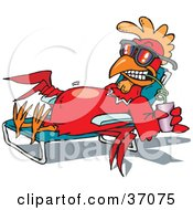Clipart Illustration Of A Relaxed Red Rooster In Shades Sun Bathing On A Lounge Chair And Sipping A Drink