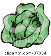 Clipart Illustration Of A Head Of Fresh Green And Organic Lettuce by Dennis Holmes Designs