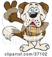 Clipart Illustration Of A Peaceful St Bernard Smiling And Gesturing The Peace Sign