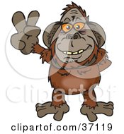 Peaceful Orangutan Smiling And Gesturing The Peace Sign