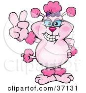Clipart Illustration Of A Peaceful Pink Poodle Smiling And Gesturing The Peace Sign by Dennis Holmes Designs