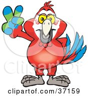 Clipart Illustration Of A Peaceful Red Macaw Parrot Smiling And Gesturing The Peace Sign