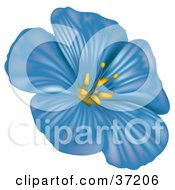 Clipart Illustration Of A Blue Anemone Flower