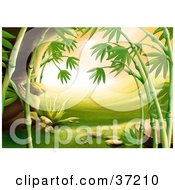 Clipart Illustration Of An Asian Landscape With Green Grass Rocks And Bamboo