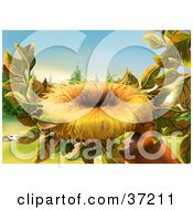 Clipart Illustration Of An Empty Bird Nest Nestled In The Leaves Of A Tree Branch by dero #COLLC37211-0053