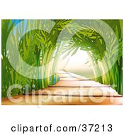 Clipart Illustration Of A Wooden Path Leading Through An Arch Of Bamboo Stalks In An Asian Garden by dero