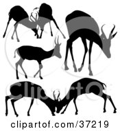 Clipart Illustration Of Scenes Of Antelope Deer Silhouetted In Black