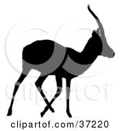 Clipart Illustration Of A Black Silhouette Of A Walking Antelope