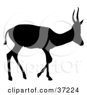 Clipart Illustration Of A Black Silhouette Of A Young Profiled Antelope With Short Antlers